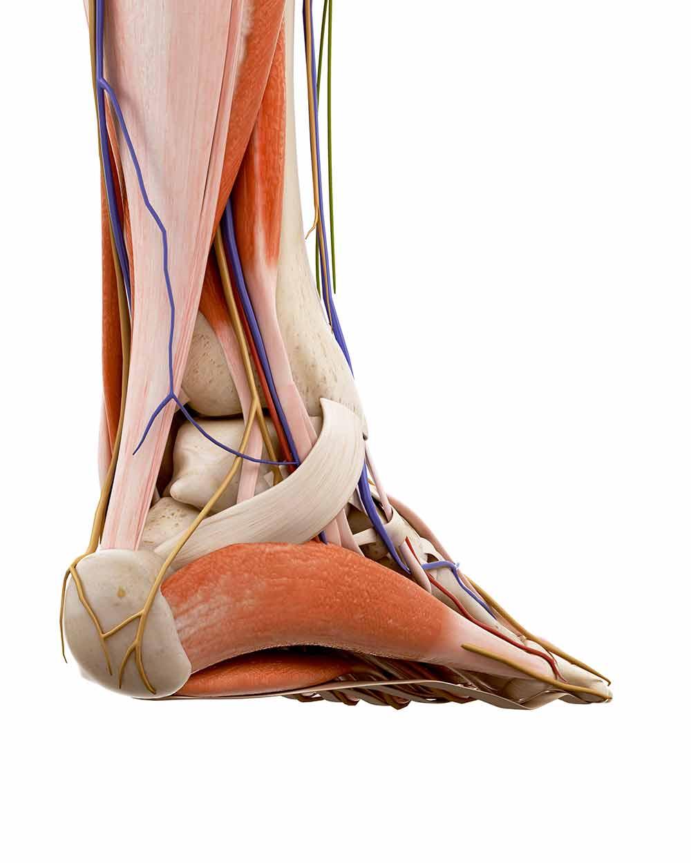 Pijn aan de binnenkant van de voet