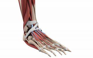 pijn aan de bovenkant van de voet